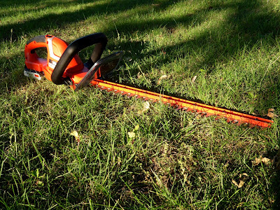 Black & Decker 20-Volt Lithium-Ion Cordless Hedge Trimmer