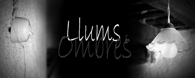 Llums i Ombres