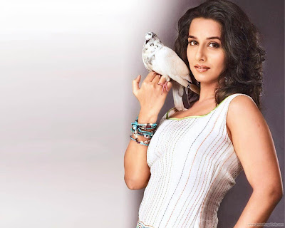 Vidya Balan Beautiful Wallpaper in Dirty Picture