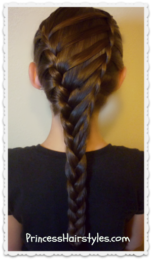 Waterfall Twist Ladder Braid Hairstyle, School Hairstyles ...