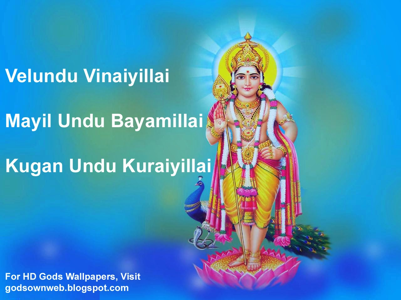 lord murugan wallpapers lord karthickeyan wallpapers