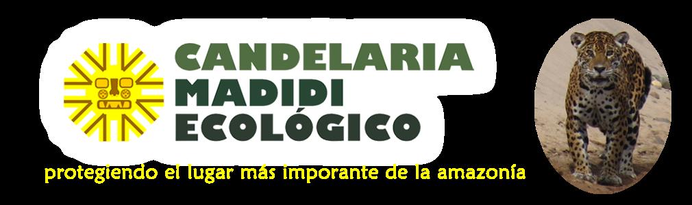 Candelaria Madidi Ecológico