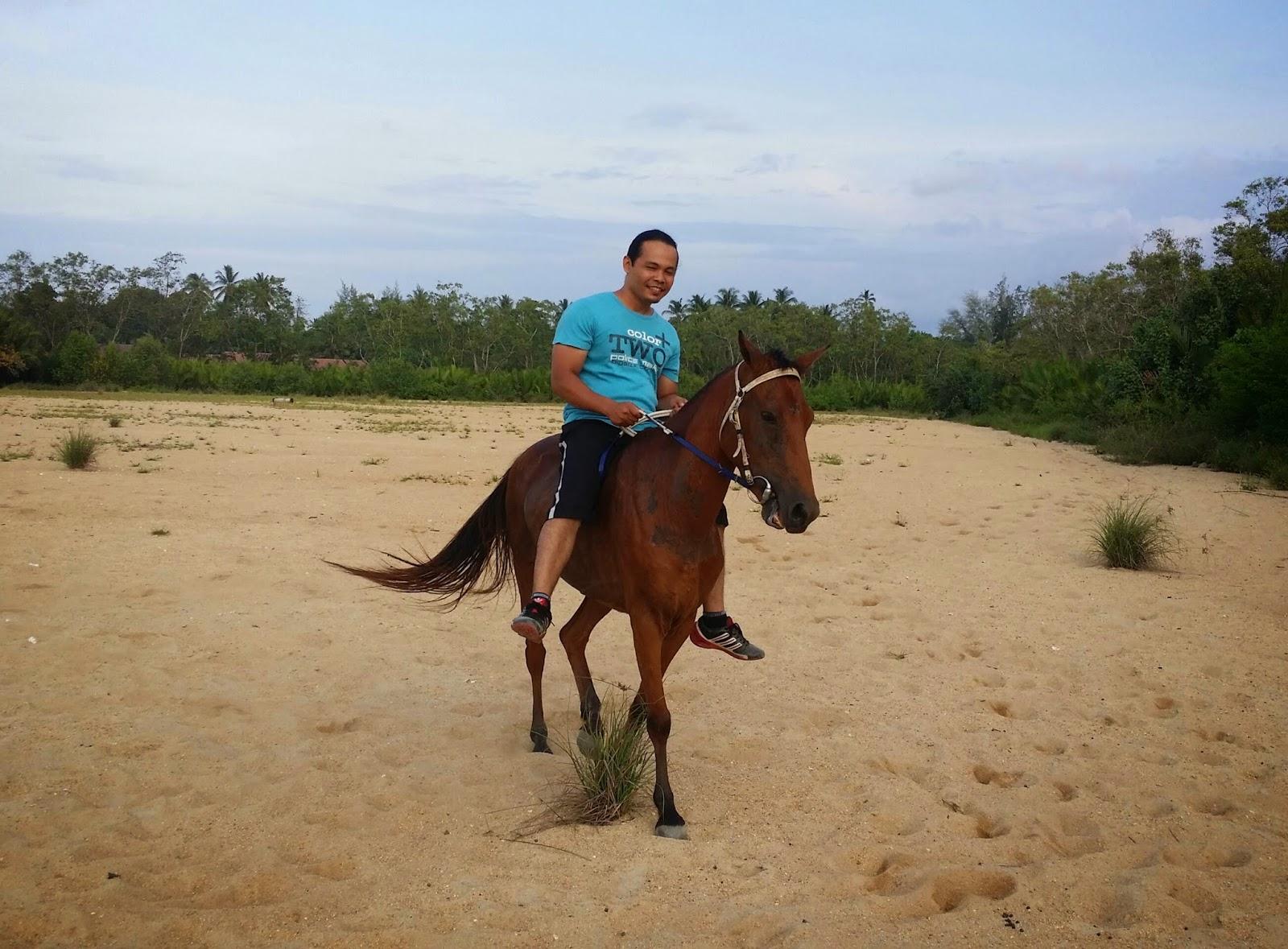 cara tunggang kuda, kereta kuda, pengalaman naik kuda, ride horse, tunggang kuda, naik kuda, jual kuda, penjual kuda, harga kuda,
