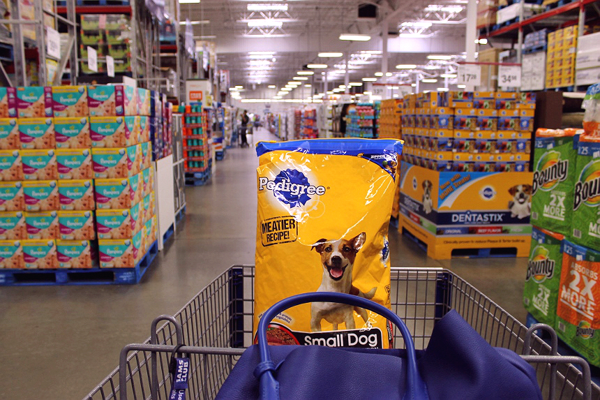 Buy any PEDIGREE® product at Sam's Club in the month of October (2015) and PEDIGREE® will donate a bowl of food to a dog in need! #PedigreeGives (ad)