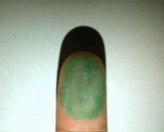 cara menggambar kura-kura dengan sidik jari