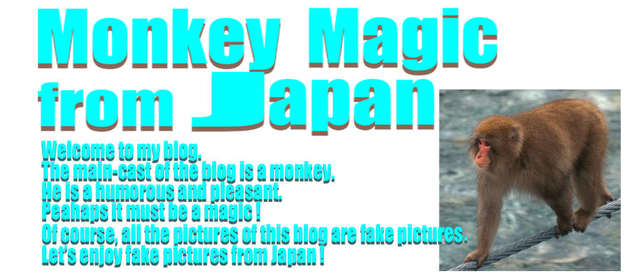 Monkey Magic from JAPAN