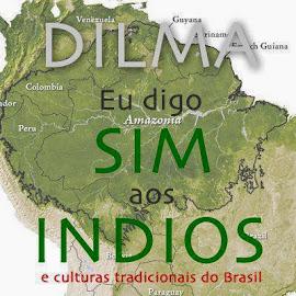 Dilma nunca falou com os índios e não quer nem falar