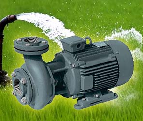 Oswal Single Phase Monoblock Pump OCP-25-HH-EXCL (2HP) Online, India - Pumpkart.com