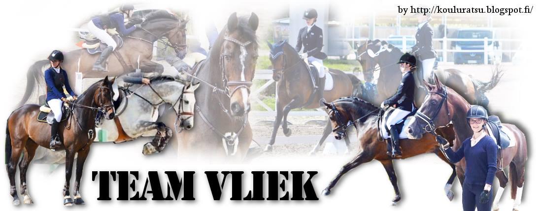 Team Vliek