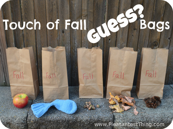 fall sensory bag