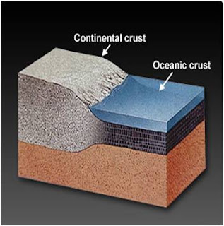 types of crust