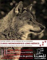 Curso Monográfico Lobo en Diciembre