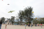 Keohi&#39;s 4th: Kites, Cake and Cookies on Mui Wo Beach