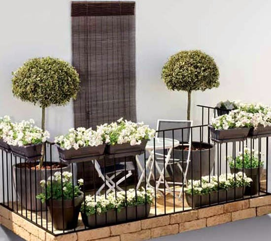 Como decorar una terraza con plantas for Como decorar tu porche