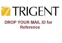 Trigent-Software-november-walkin