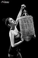 Chacy Luna - My Bird cage
