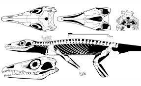 prehistoric synapsid fauna