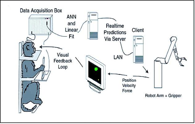 Brain Computer Interface7