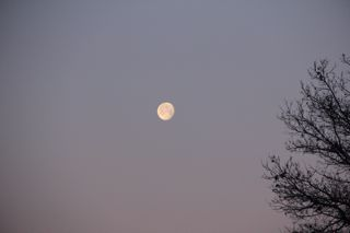 photo of an almost full moon setting