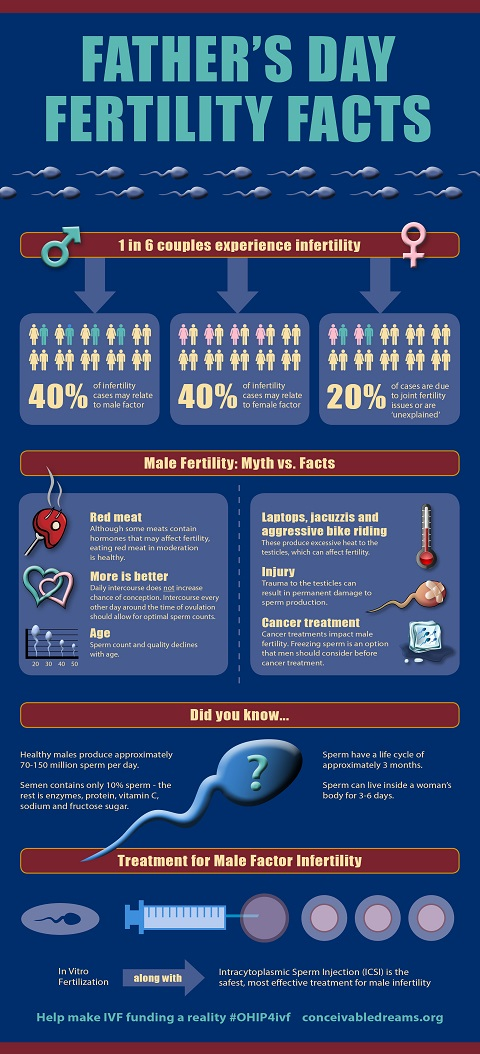 male_fertility_facts