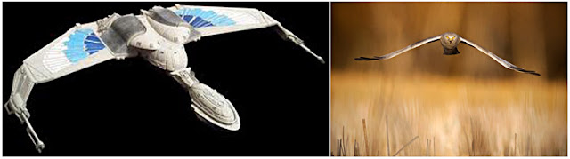 Romulan Bird of Prey (left) and 'Harrier Stare'