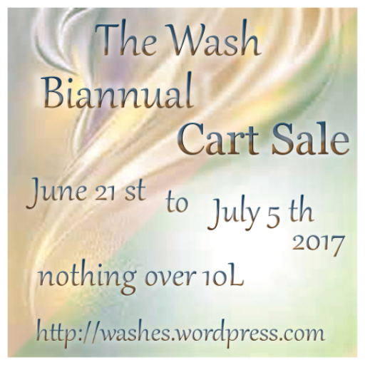 -The Wash Sale-