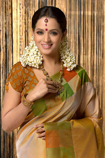 Bhavana Photos In Saree