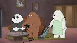 Ursos sem Cursos