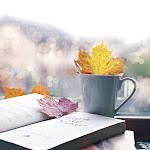 Café Com Bolo & Poesia
