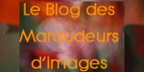 retour blog maraudeur