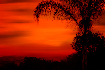 orange sunset in southern california