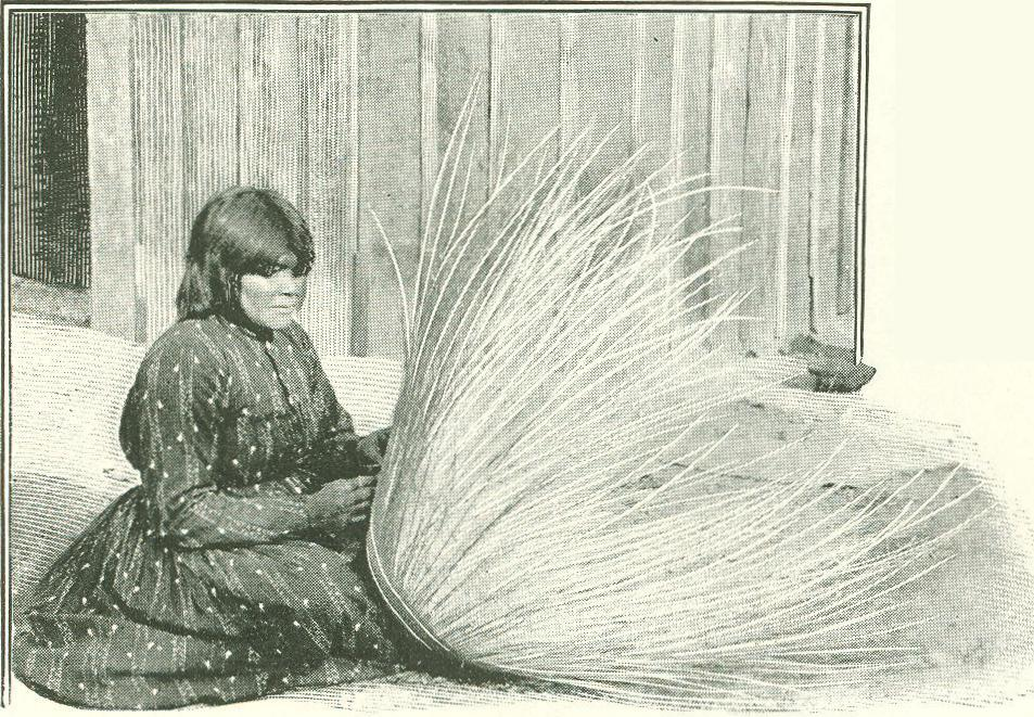 History Of Basket Weaving : Digital history project how indian baskets are made pomo