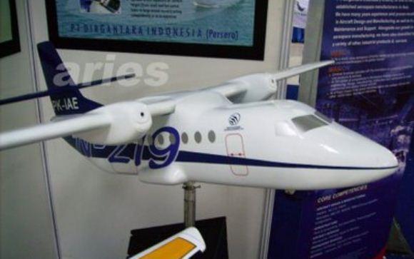 Model N-219