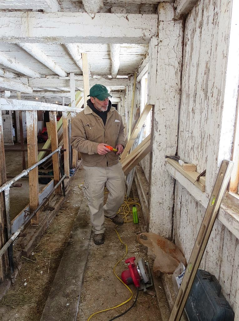 how to build a cattle squeeze chute