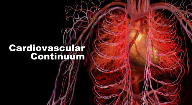 Сердечно-сосудистый континуум: единые причины многих болезней.