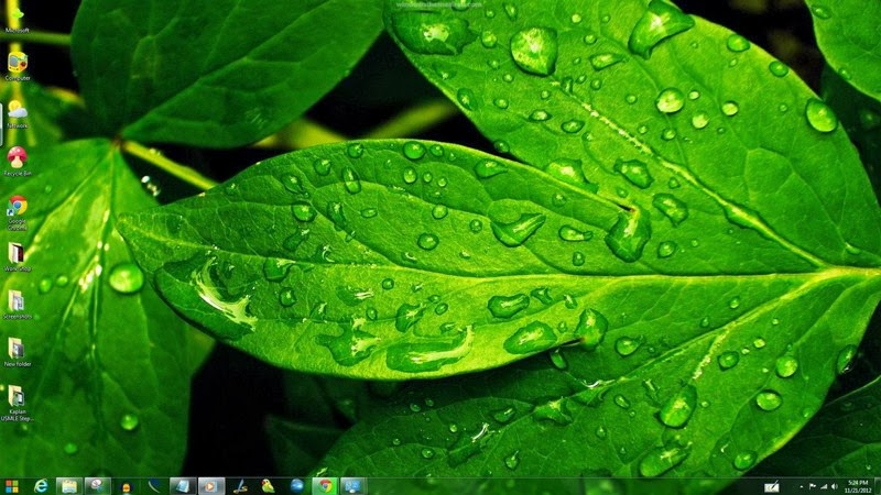 Green Windows Theme