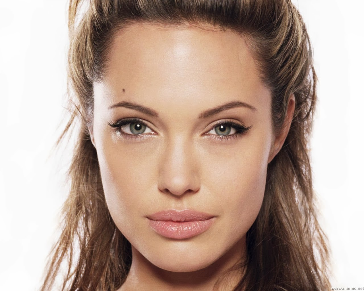 Picture of Actress Angelina Jolie