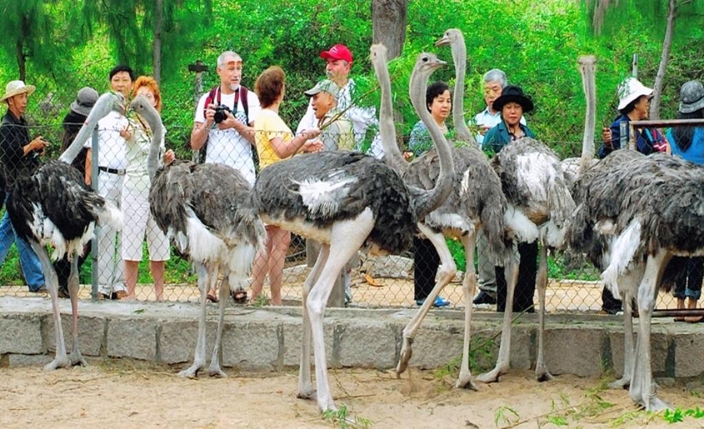 Khu du lịch sinh thái Suối Hoa Lan ở đâu?