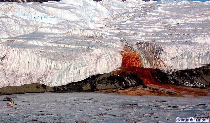 Si merah dari antartika (gletser merah antartika)