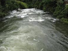 Rio Pialapi