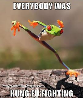 kungfu animal frog