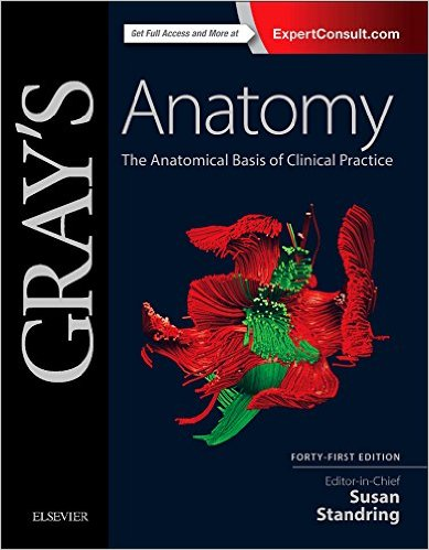 Grays Anatomy 41st Ed Test Fmp