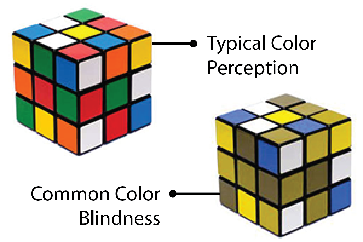 Symptoms Of Color Blindness 28 Images Istanbul Retina