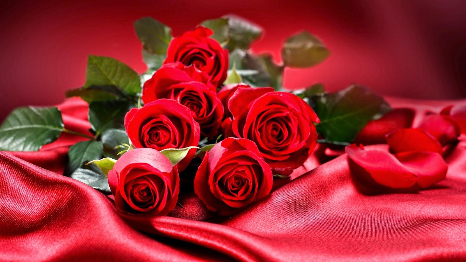 Цветок роза для аву