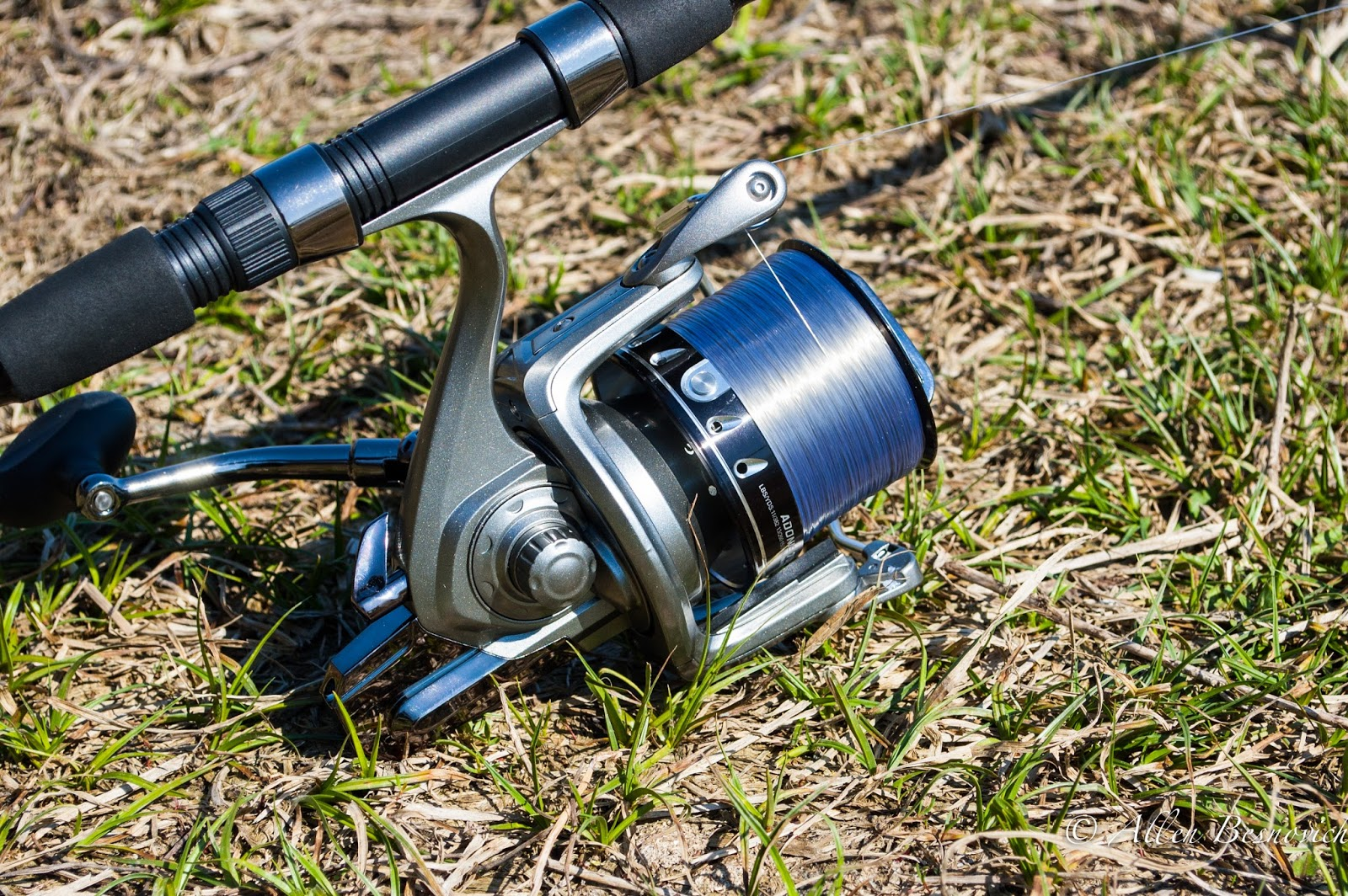 Oltenia fishing carp fishing and more caperlan adonis for Carp fishing reels