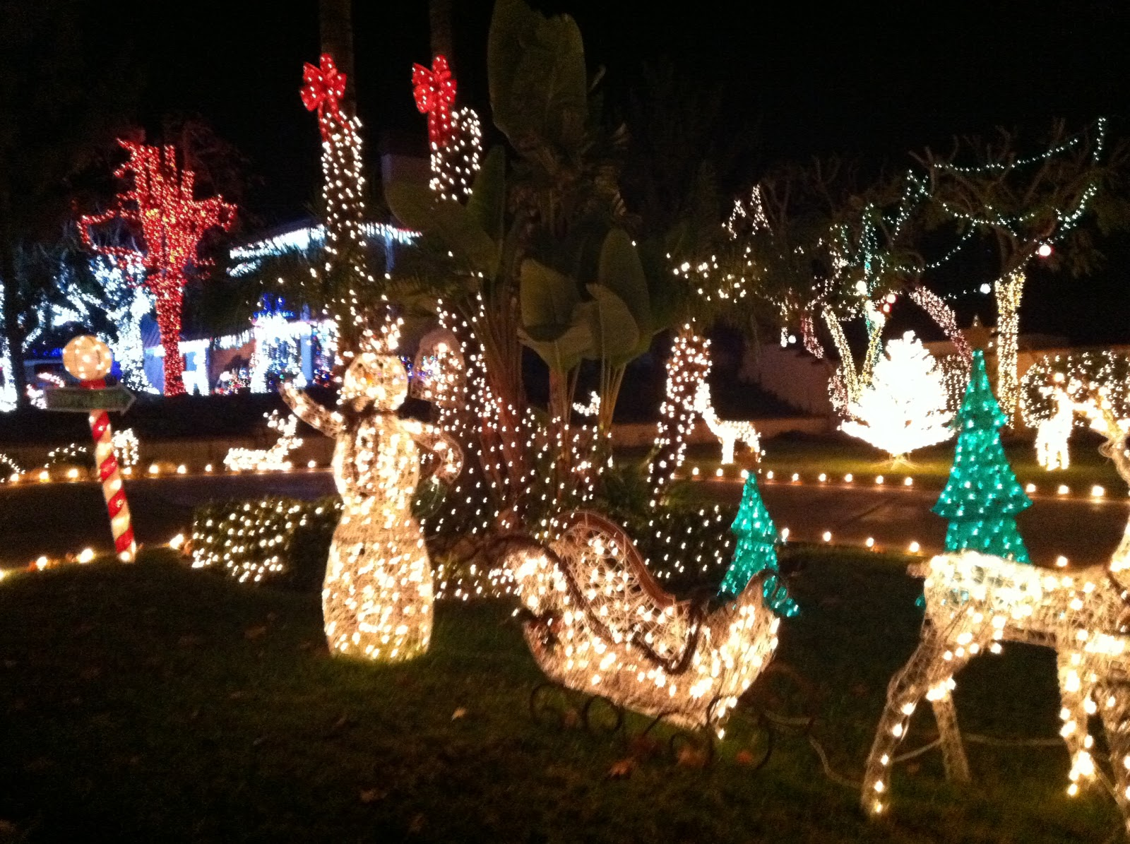 here are some pictures taken yesterday but its a lot better in person than it is on camera - Thoroughbred Christmas Lights