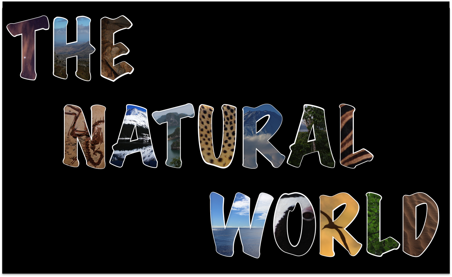 The Natural World Has Moved!