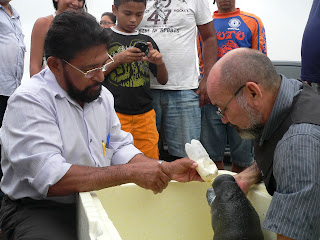 Pedro Tapuru e Moacir Alho