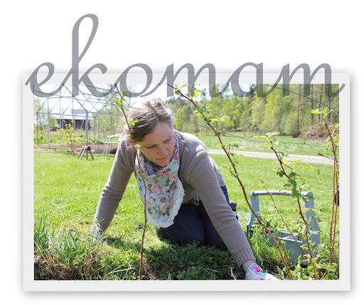 ekomam