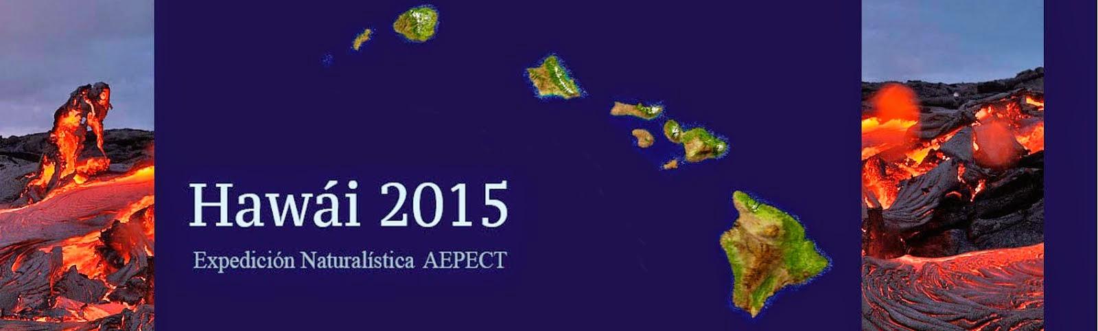 Hawái 2015